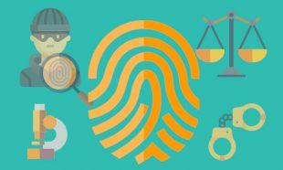 Perito Judicial Dactiloscopia Lofoscopia huellas dactilares